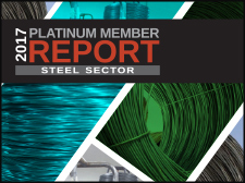 A cropped image of the 2017 Platinum Member Report cover.